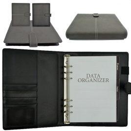 Basal Organiser